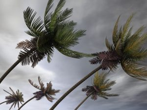 Hurricane Season is Here – Is Your Home Ready?